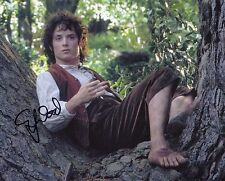 Elijah wood Signed Lord of the Rings Photo as Frodo With Fanexpo Coa + proof