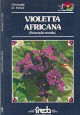 Violetta Africana. Saintpaulia ionantha. Giuseppe Di Felice. 1981. .