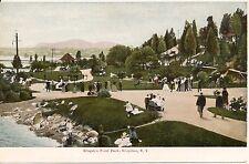 Scene in Kingston Point Park Kingston NY Postcard