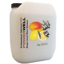 POWERWELL Mango Lemon Minze Shampoo 10 L