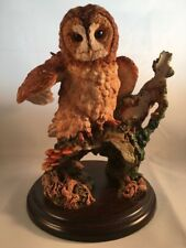 "Royal Doulton 01052 Tawny Owl - Wings Open Large Ltd Edition 8"" Figurine"