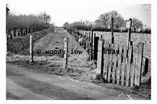 bb0397 - Site of Blean & Tyler Hill Railway Halt , Kent in 1963 - photograph