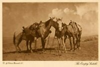 THE VANISHING RACE - THE EMPTY SADDLE - GENUINE - PHOTOGRAVURE 71