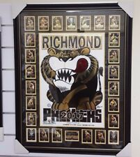 2017 Richmond WEG Wegart FOIL Premiership Poster FRAMED with PREMIERSHIP cards