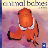 Animal Babies in Seas