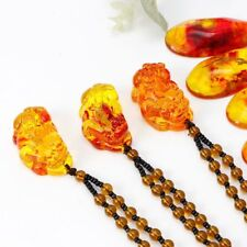 Unisex Baltic Amber Plant Fossil Inlaid Natural Pendant Necklace Fashion Jewelry