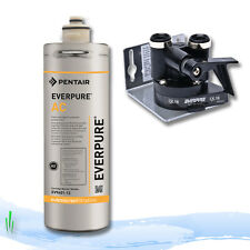 Everpure carbon charcoal water filters ebay for Pentair everpure