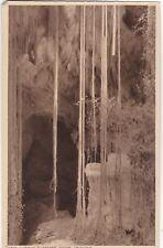 Liana Curtain, GASPAREE CAVES, Trinidad