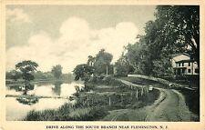 A View of the Drive Along the South Branch, Flemington NJ
