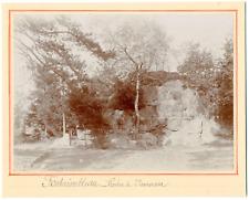 France, Fontainebleau, la route de Nemorosa  vintage silver print Tirage a