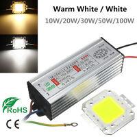 10W 20W 30W 50W 100W LED Driver Chip Bianco/Caldo Alimentazione Elettrica IP65