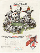 DALMATIAN PUPPIES AND CROQUET SET OLD USA 1950'S MAGAZINE ADVERT FOR TEXACO FUEL
