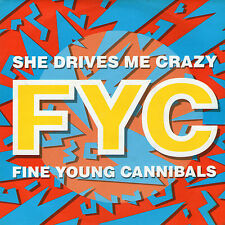 "Fine Young Cannibals - She Drives Me Crazy - 7 "" Single"
