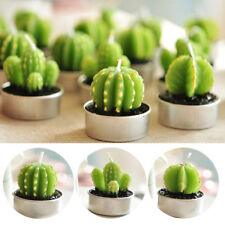 Ball Cactus Scented Candle Plant Party Wedding Home Decor Access Creative Gift