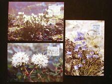 Greenland Maximum Card 1990.06.07. Arctic Flowers II - EXCELLENT