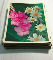 Postcards Lot 50 pcs Vintage Unposted Postcard Flowers 70-80s Postcards set
