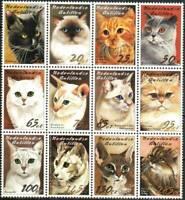 Netherlands Antilles Stamp - Cats Stamp - NH