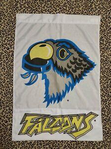 Springfield Falcons MA Hockey Flag Thunderbirds Retired Vaulted 3'x5'