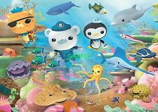 Octonauts Edible Birthday Cake Topper Frosting Icing 1/4 Sheet