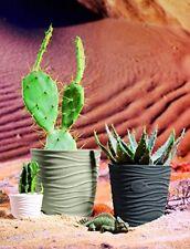 Vaso in ceramica per piante