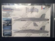 TwoBobs 1/32 F/A-18C/D Thundebolts and Vikings: Marine Hornets of OIF