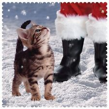 "Charity Christmas Cards - Kitten ""Looking Up At Santa"" (10 Cards of 1 Design)"