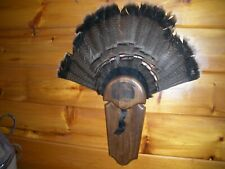 Vintage Pa. TURKEY Gobbler Fan and Beard Mount