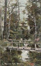 Rotten Footbridge In Malvern Park, SOLIHULL, Warwickshire