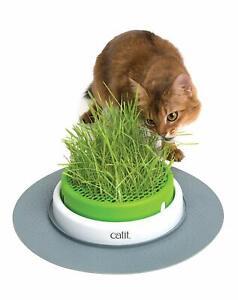 Catit Grass Planter Senses 2.0 Katzen-Grastopf Katzengras Katzenminze Haustier