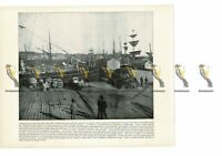 Auckland Harbour, New Zealand, Book Illustration (Print), 1899