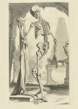 Skeleton Hand Left, De Humani Corporis, 1685, Govert Bidloo, Anatomy Poster