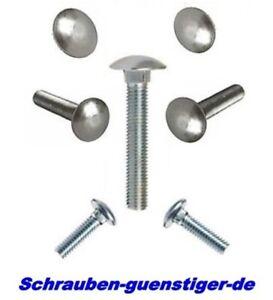 Schlo/ßschrauben Schlossschrauben mit Vierkantansatz 50 St/ück M8x25 Edelstahl A2 V2A Flachrund-Schrauben DIN 603 OPIOL QUALITY