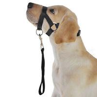 Ee _ Nylon Perro Bozal Pet Head Collar Entrenamiento Boca Jaula para M L EG