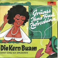 Single / DIE KERN BUAM / AUSTRIA / SELTEN /  1970 /