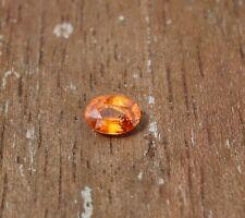 edelsteine24    Sehr schöner fac. Mandarin Spessartin Granat Oval 8x6mm A Mand-1