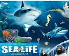 💖 Sun Savers Codes > ANY DATES < SEPTEMBER & AUGUST 123456789 Sea Life Tickets