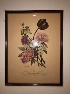 Jean Louis Prevost: Tulips & Peonies No 5