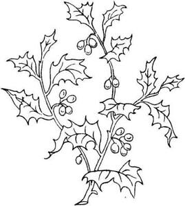 Christmas - Holly & Berries  Unmounted Clear Stamp Approx 67x75mm