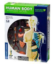 Thames & Kosmos construye tu cuerpo humano anatomía Modelo 37 piezas
