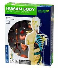 Thames & Kosmos BUILD YOUR HUMAN BODY ANATOMY MODEL 37 parts