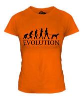 WHIPPET EVOLUTION OF MAN LADIES T-SHIRT TEE TOP DOG LOVER GIFT WALKER WALKING