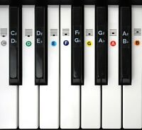 Color Piano Keyboard Stickers- Includes Note Position on Grand Staff