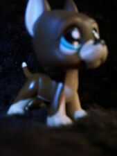 Littlest Pet Shop Lps Rare Chocolate Brown Great Dane Dog Dot Eyes #817