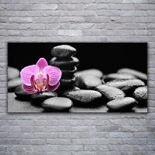 Acrylglasbilder Wandbilder Druck 120x60 Blume Steine Kunst
