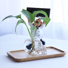 Skull Shaped Glass Flower Vase Air Plants Terrarium Container Hydroponic Pot