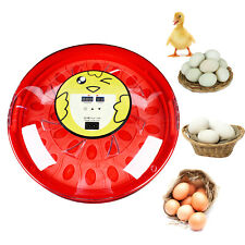 30 Eggs Automatic Egg Incubator Mini Automatic Egg Hatcher Withtemperature Control