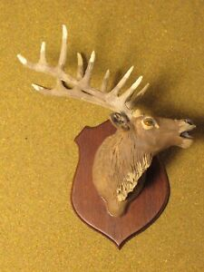 dollhouse miniatures 1:12 mounted deer head taxidermy Artisan made