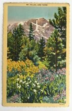1940 CA Postcard Lake Tahoe Mt. Tallac scenic mountains flowers Frasher's Teich
