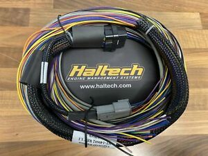 Haltech Elite 550 ECU Basic Universal Wire in Loom