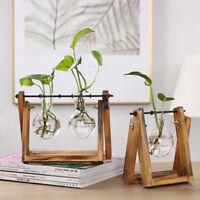 Wooden Stand Glass Terrarium Container Hydroponics Plant Flower Pot Desk Vase2-